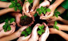 ¿Qué es la responsabilidad ambiental?